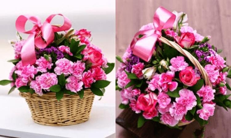 hoa tưới cho những người phụ nữ giản dị, yêu thích sự ấm cúng